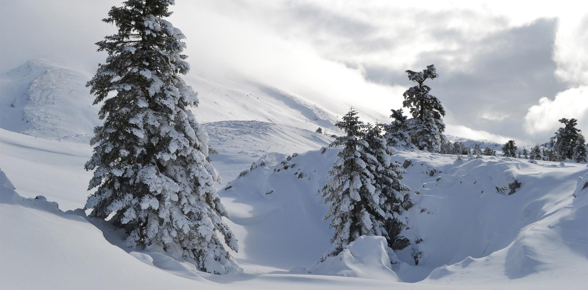 Χειμώνας στον Γεροντόβραχο, Παρνασσός (Φωτο: Γιάννης Κωστελίδης)
